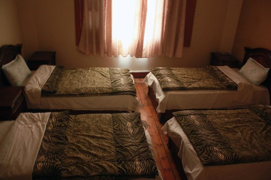 Hola Cairo Hostel: 4 bed private, A/C, Private Bathroom