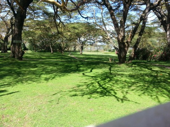 Lake Naivasha Country Club-Sun Africa Hotels : Beautiful Grounds
