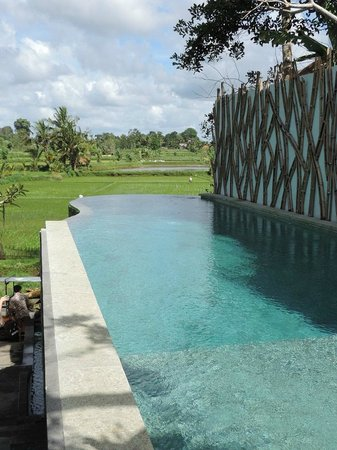 Ubud Padi Villas: Main Pool