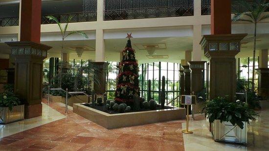 TUI SENSIMAR Natura Palace & SPA: Lobby