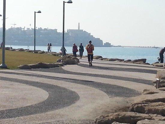 Manta Ray: Tel Aviv promenade and a view of Old Jaffa