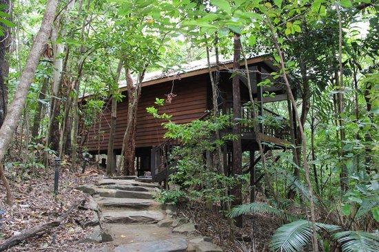 Thala Beach Nature Reserve: Eucalyptus room