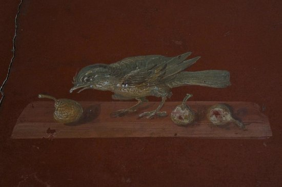 Scavi di Oplontis : Fresco detail