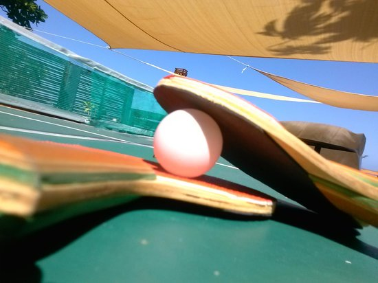 Moxons Beach Club : Ping Pong Table