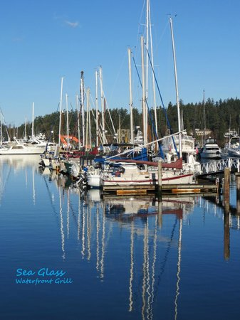 Sea Glass Waterfront Grill: The View