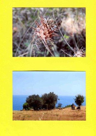 Agriturismo Grassetti: nei dintorni ..da raggiungere a piedi