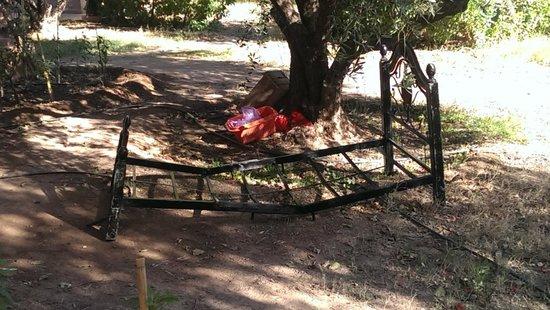 Las Palmeras : just lying around