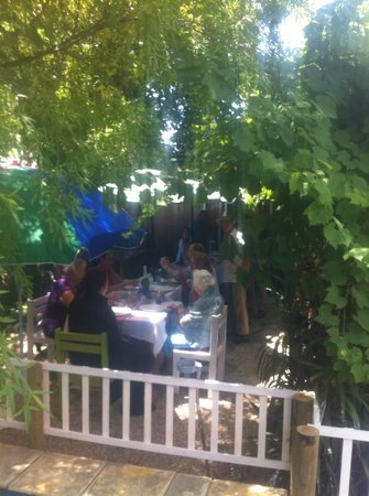 The Vine : Lunch in the Garden