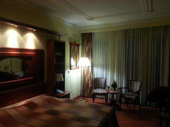 Hotel Galleria: Room