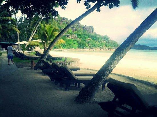 Paradise Sun: View