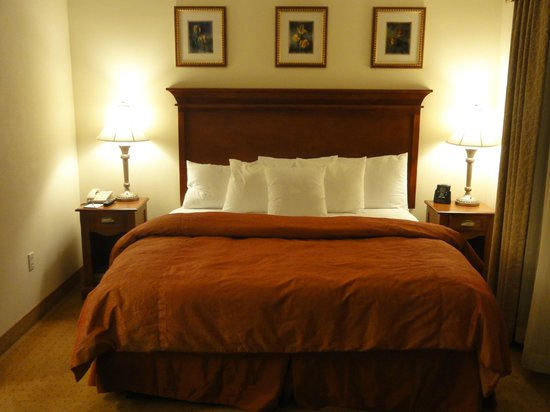 Homewood Suites by Hilton East Rutherford-Meadowlands: Room