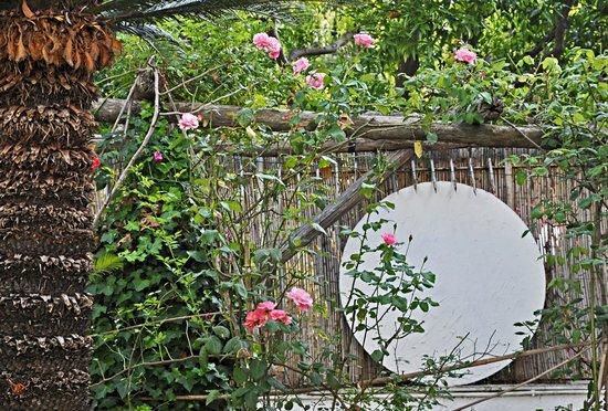 Residenza Le Rose Villa d'Arte : garden
