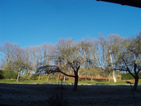 VVF Villages Orbey : Vue de notre chambre