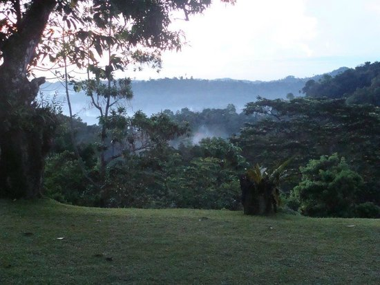 Eco Jungle Hideout: Panoramic view