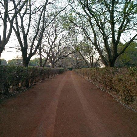 Sondela Nature Reserve Accommodation照片