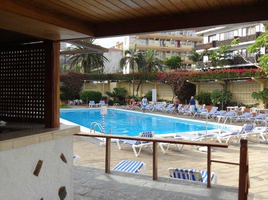 Catalonia Las Vegas: бассейн