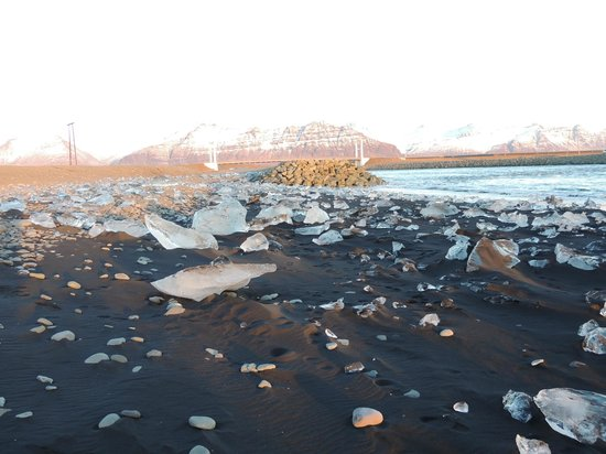 Discover Iceland: Black sand beach with bits of icebergs