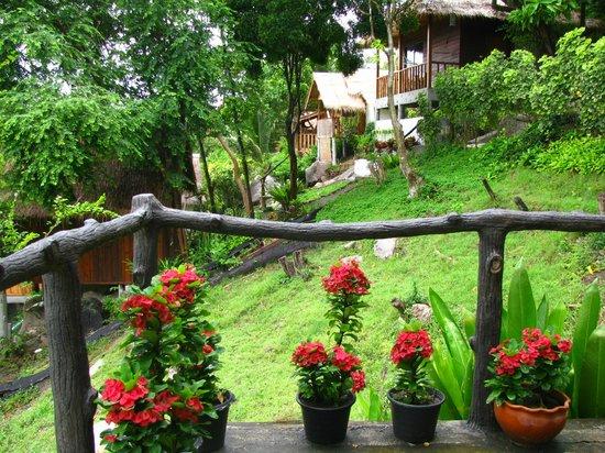 Seaview Resort and Restaurant: the garden