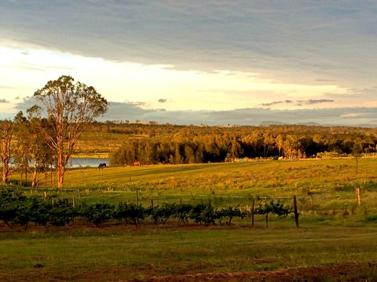 Hunter Valley Resort: view from hotel surround