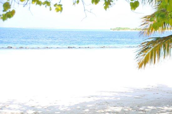 Royal Island Resort & Spa: spiaggia fronte piscina