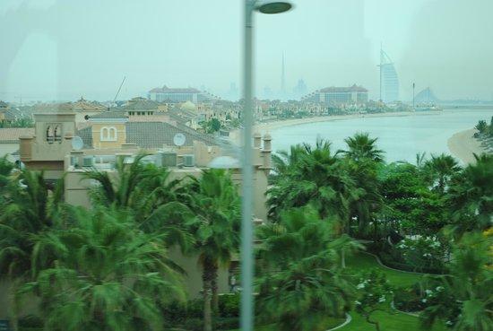 """Palm Jumeirah : """"Ветка"""" Пальмы"""