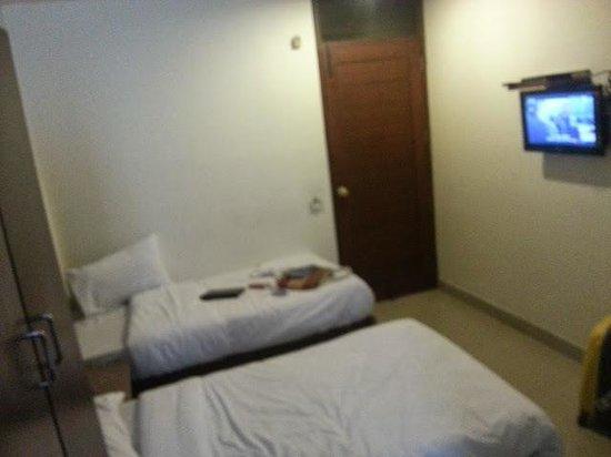 Hotel The Raj at New Delhi Railway Station : Двухместный номер