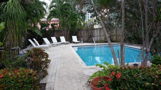 Winterset Hotel: piscina