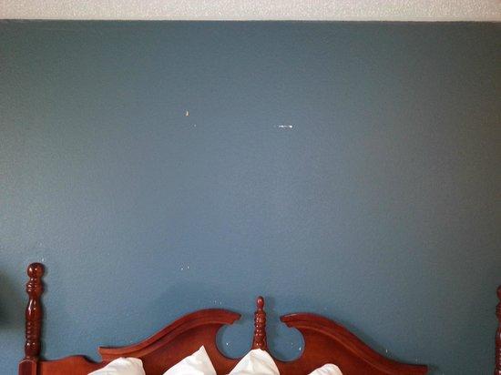 Ambassador Inn: Wand mit Kaugummi an der Wand