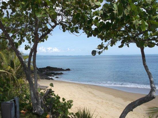 W Retreat & Spa Vieques: beach looking toward the mainland