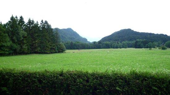 Alpenhotel Allgaeu: Вид с террасы