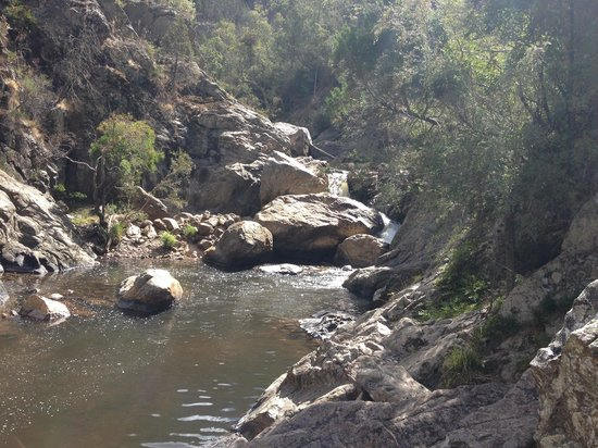 Wee Jasper Reserves: Micalong Creek
