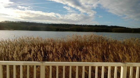 Center Parcs Le Lac d'Ailette : le lac