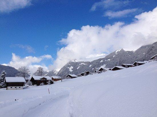 Grand Hotel Regina Grindelwald: Winterland suroundings