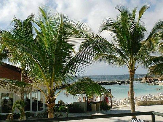 Hard Rock Hotel Riviera Maya : Cove/beach