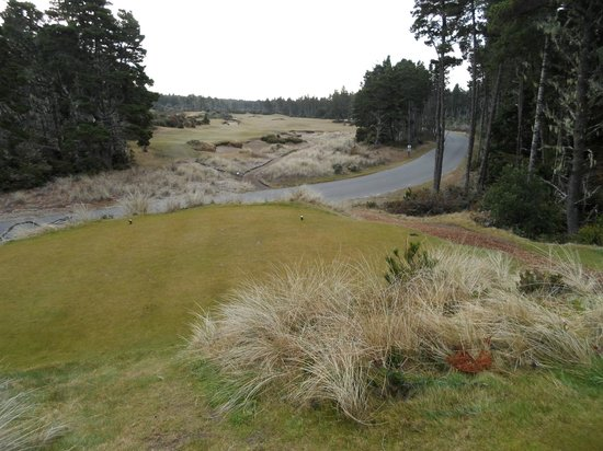 Bandon Dunes Golf Resort: 3rd hole at Bandon Trails