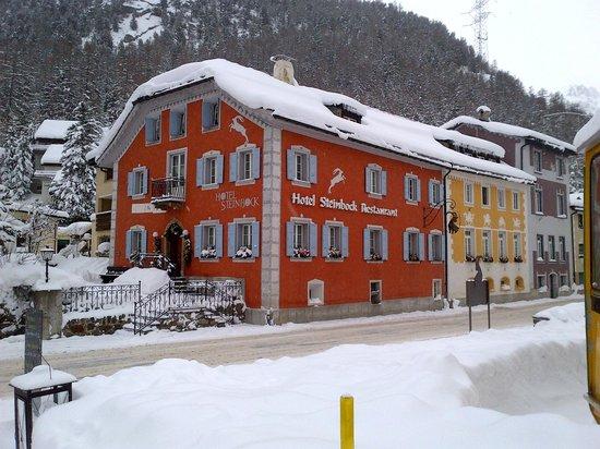 Hotel Steinbock: Hotel