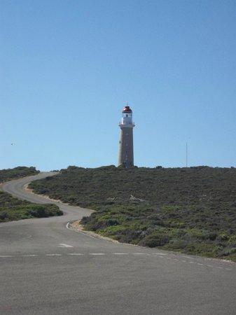 Kangaroo Island Odysseys: Faro di  Cape Du Couedic
