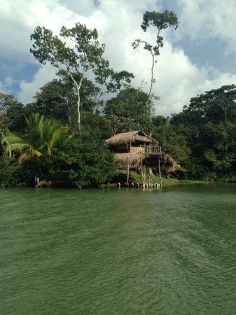 Monkey Lodge Panama: Panama Canal tour
