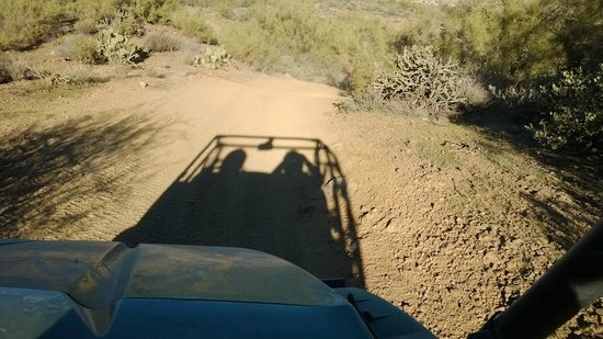 Arizona Outdoor Fun: If you keep the sun at your back you'll be going north.