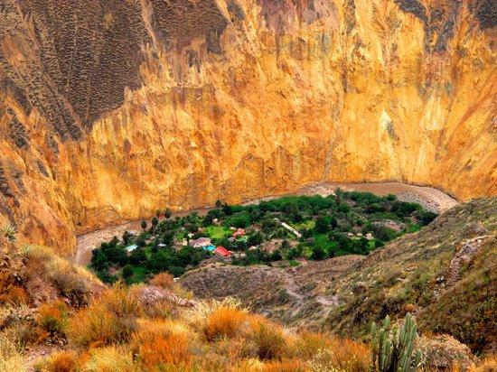 Cabanaconde, Peru: OASIS SANGALLE -
