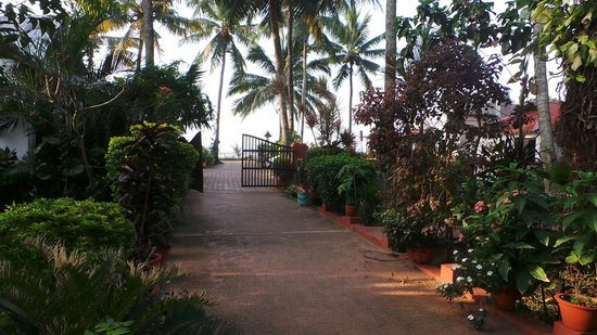 Hill View Beach Resort: Path from entrance to reception