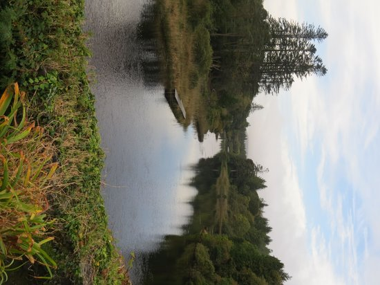Ballynahinch Castle Hotel: Another view of the river from the back of Ballynahinch