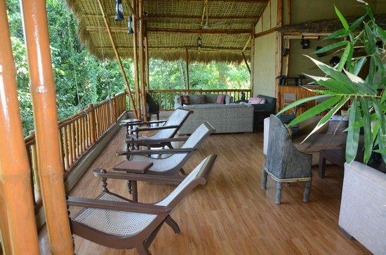 Diphlu River Lodge: The lobby