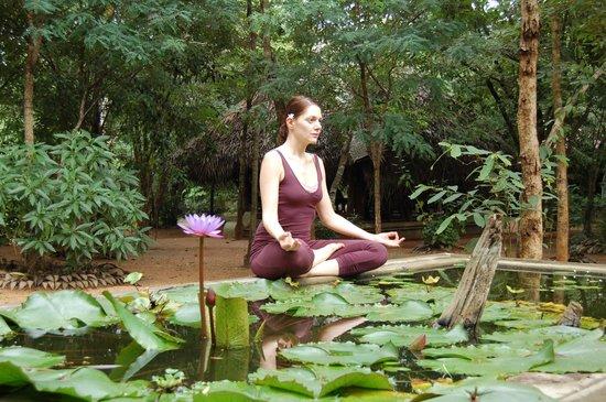 Athreya Hotel & Spa : Herbal Garden.