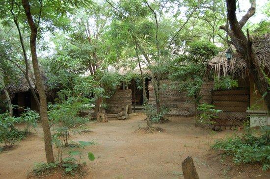 Athreya Hotel & Spa : Treatment area..