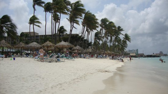 Caribbean Palm Village Resort: One of the many wind swept beaches on the Western side of Aruba.