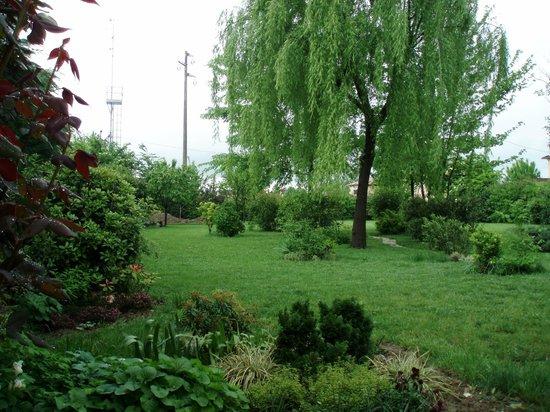 B&B Centoquattro: il nostro giardino