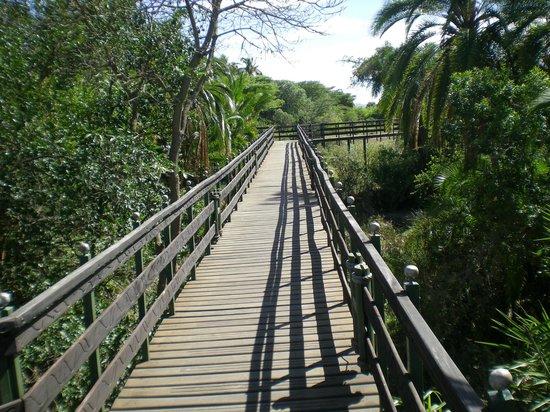 Keekorok Lodge-Sun Africa Hotels: -