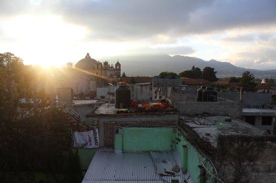 Iguana Hostel: Rooftop View