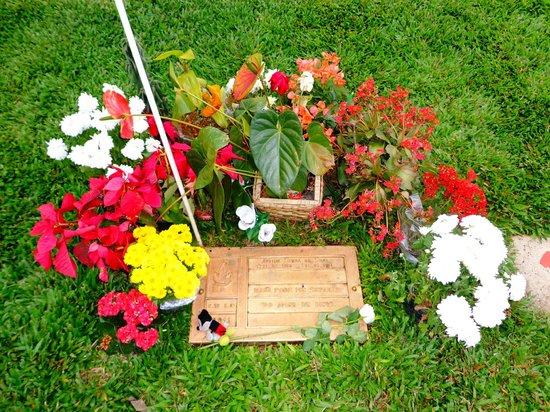 Senna's Grave Morumbi Cemetery: Senna's grave